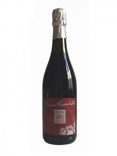Vino rosso frizzante secco lambrusco Salamino