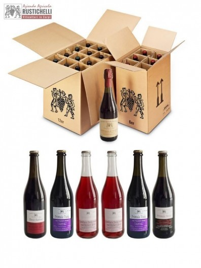 Verkostung Pack Lambrusco Emilia IGP Party