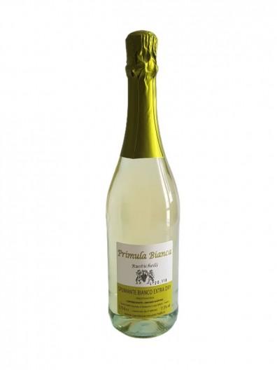 Dry sparkling wine red Lambrusco Emilia PGI